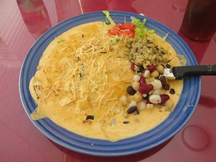 Creamy chipotle chicken enchiladas