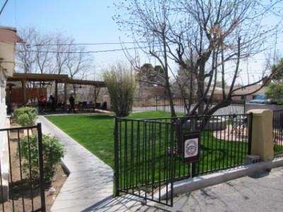 Nopalito's outdoor patio area